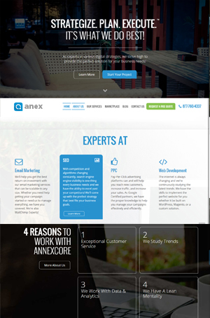 annex-web-design-project-in-egypt